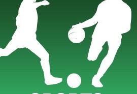 vignette sports 2013